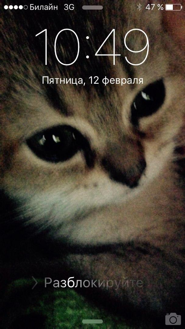 Катюшка Десятова, Москва - фото №3