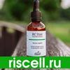 Riscell.ru - искусство возрождать красоту