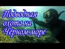 Подводная охота на Черном море. Крым.