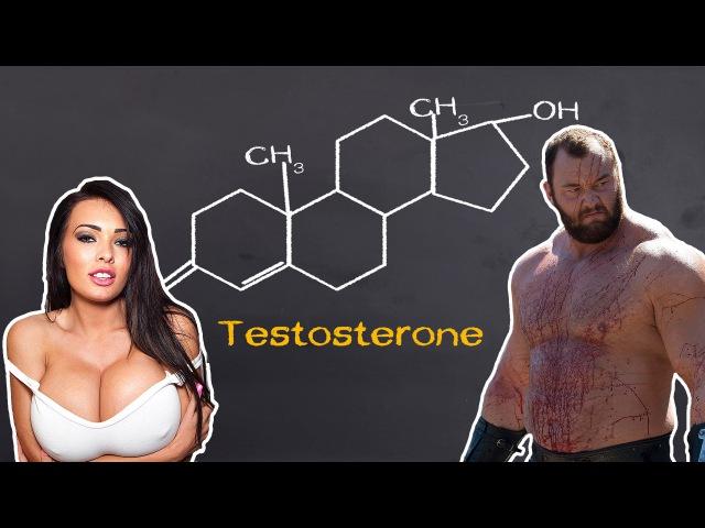 Неизвестные факты о тестостероне Железный Топ ytbpdtcnyst afrns j ntcnjcnthjyt tktpysq njg