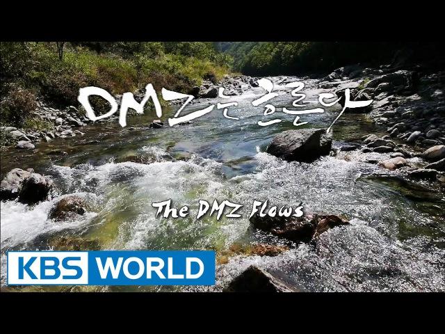 Korean Geographic   코리언 지오그래픽 - Ep.6 : The River Runs Through DMZ (2014.12.22)