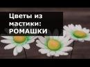 Цветы из мастики Ромашка Пошаговый мастер класс лепки ромашки из мастики