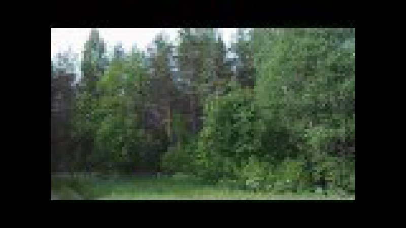 Окраина деревни Ящерово-2