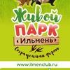 Страусиная ферма 🐓 парк живой природы Ильмень