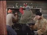 Пес Барбос и необычный кросс. Самогонщики.