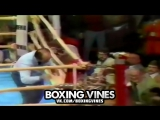 BOXERS PUNCHED THROUGH THE ROPES #8 (Boxing Vines) | vk.comboxingvines