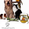 ПРОКОРМИ.ру - все для животных в г.Зеленоград