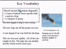 Intermediate Learning English Lesson 6 - Lack of Sophistication- Vocabulary and Pronunciation