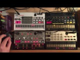 KORG Volca sample, bass, beats, keys TECHNO #3