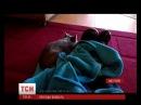За три дні ролик з вомбатом-сиротою переглянуло до 55 тисяч людей