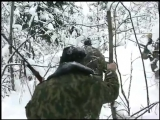 застрелив медьведя забрали медвежат