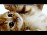 «Со стены Игры» под музыку James Newton Howard - 03. Maleficent Flies [OST Малефисента / Maleficent]. Picrolla