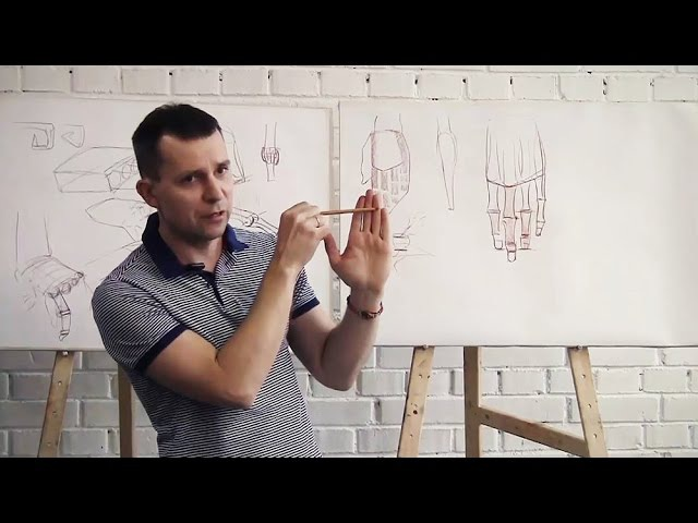 Лекция Александра Рыжкина об анатомии конечностей