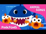 Baby Shark Animal Songs PINKFONG Songs for Children