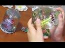 Подарок сюрприз вечный нано-аквариум своими руками мини аквариум Флорариум Поделки с детьми!