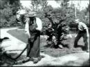 Политый поливальщик (1895 г., Луи и Огюст Люмьеры)