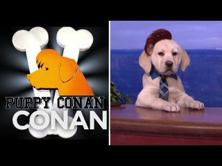 Puppy Conan V Featuring Puppy Sia & Puppy Larry King