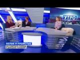 Алиса Шамай и ее самоеды на канале Life78 прямой эфир
