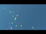 Поиск видеозаписей по запросу видео поздравление с днем рожд