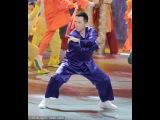 2016 Newest HD Donnie Yen LIVE Peformance Chinese New Year Gala