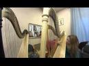 Арфа Max Payne Theme тема из игра Макс Пейн Harp cover кавер