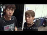 [VIDEO] 151225 EXO MAMA 2015 Backstage - Hello From SHINee, f(x), EXO, TTS