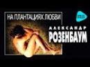 Александр Розенбаум - На плантациях любви Альбом 1996