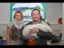 Пуховые кролики Лады Кирисенко Выставка Ушастики от мала до велика