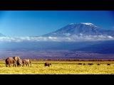 Покорить Килиманджаро с Виктором Набутовым. Путешествие