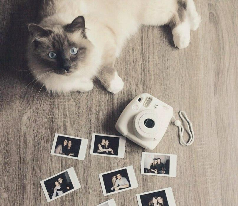 Фотоаппарат Instax Mini 8 White!