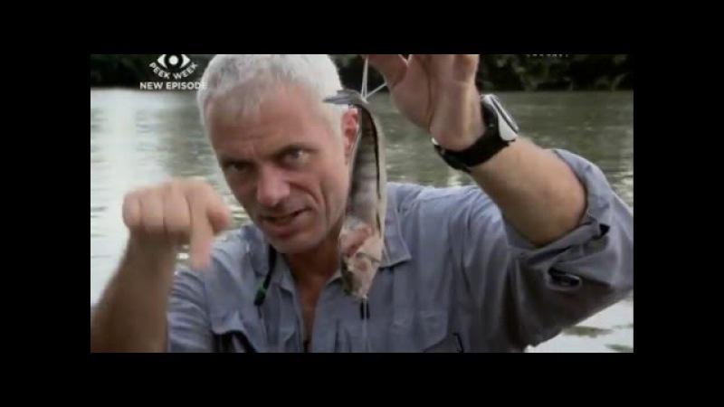 Речные монстры: 2 сезон 2 серия- смертоносный скат