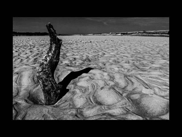 Daevid Allen-Deep Sea