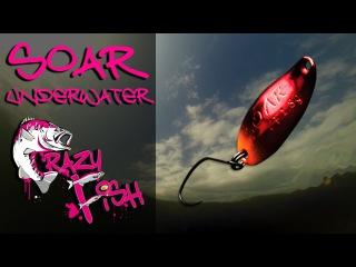 Приманки под водой. Crazy Fish. Soar. Underwater.