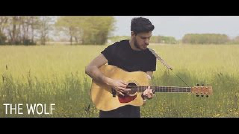 Mumford Sons - The Wolf (Acoustic Folk Cover By Damien McFly)