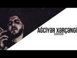 Slayer S9 - Ağciyər Xərçəngi (Chorus: Ayşən Muradlı) #ağciyərxərçəngi