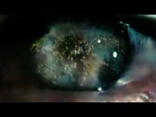 Blade Runner - Autoencoded: Full film