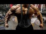 Bodybuilding Motivation ● SORRY, I'M A MONSTER