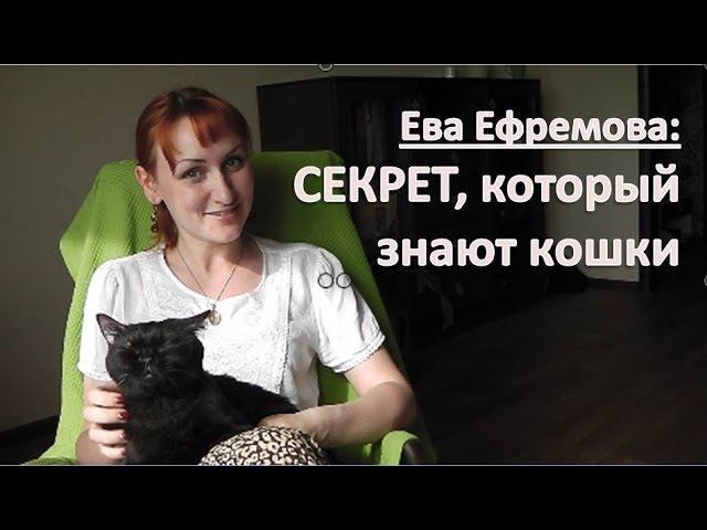 Секрет, который знают кошки, но забыли люди (Ева Ефремова, тета хилинг)