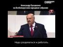 Новый совет от Лукашенко: Надо раздеваться и работать