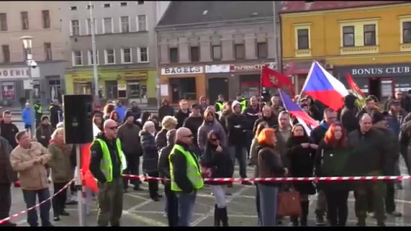 Plzeňský manifest 30.01.16 - 10. řečník - Milan Michael Štrunc