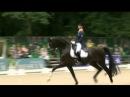 Adelinde Cornelissen KWPN Stallion AQIEDO Undigo Grand Prix CDI3 * CHIO Rotterdam 72 140%
