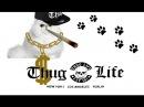 Thug Life Cats
