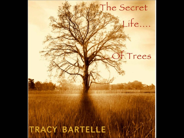 THE SECRET LIFE OF TREES RELAX and CHILL OUT to 75 mins of Original Music by Tracy Bartelle