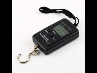 Электронные весы для рыбалки(10гр - 40кг).Посылка с Ebay.