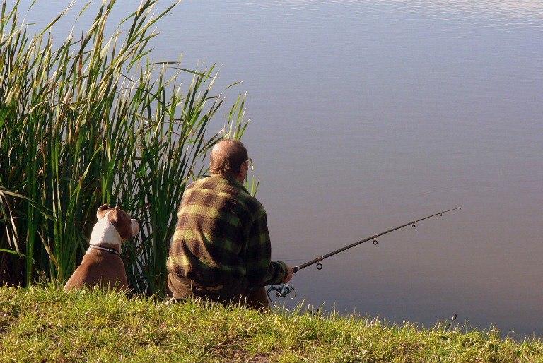 летняя рыбалка и клев рыбы