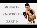 Erik Morales Knockouts (Part 1)