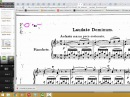 Чтение нот с листа Урок 2 Размер
