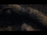 Беовульф / Beowulf (2016) фрагмент