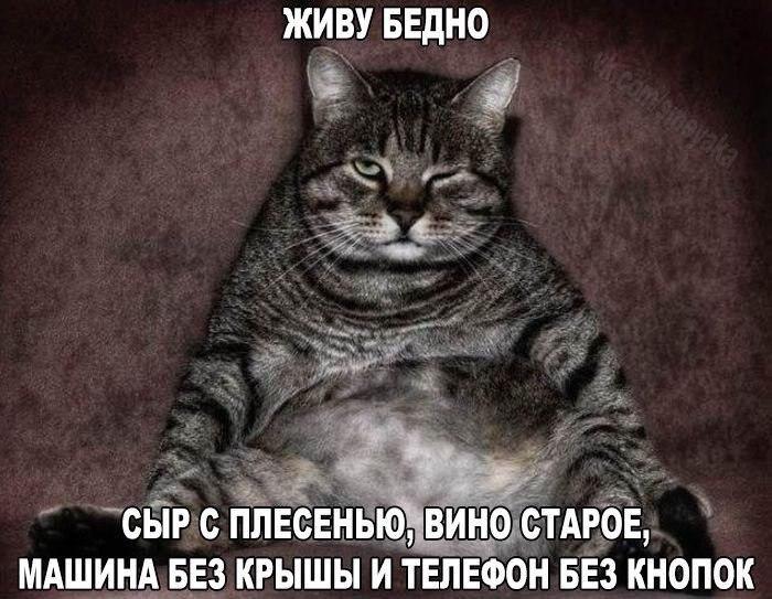 https://pp.vk.me/c630320/v630320833/3dd07/VsGqkaZjsGM.jpg