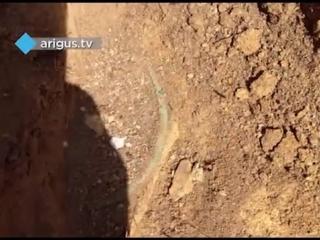 Жители Улан-Удэ на своем дачном участке обнаружили средневековое захоронение